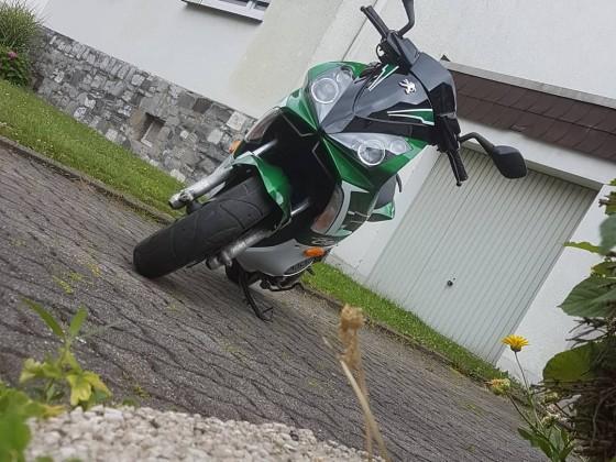 Mein grünes Beast :D